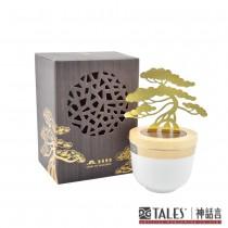 金錢樹-聚寶盆 (取材中國盆景的獨特技藝)