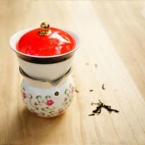 故宮神話-我是乾隆-天子之寶-紋彩-月季白-小乾隆茶器(1壺1杯)